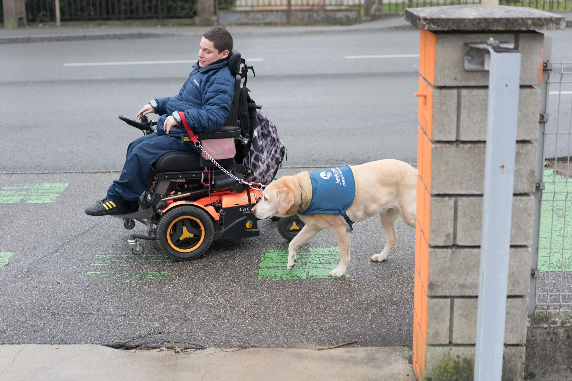 Edouard, sur son fauteuil, avance sur une piste cyclable en compagnie de son chien-guide