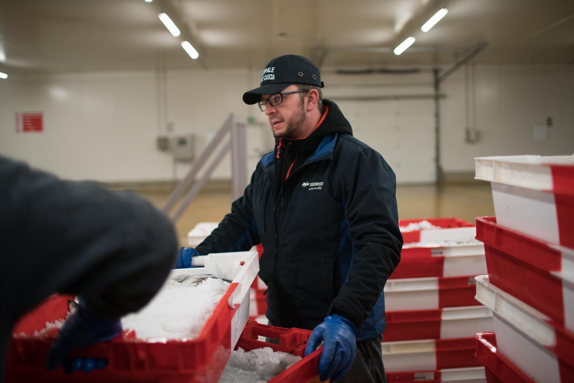 José Leprêtre manipule des caisses de poissons.