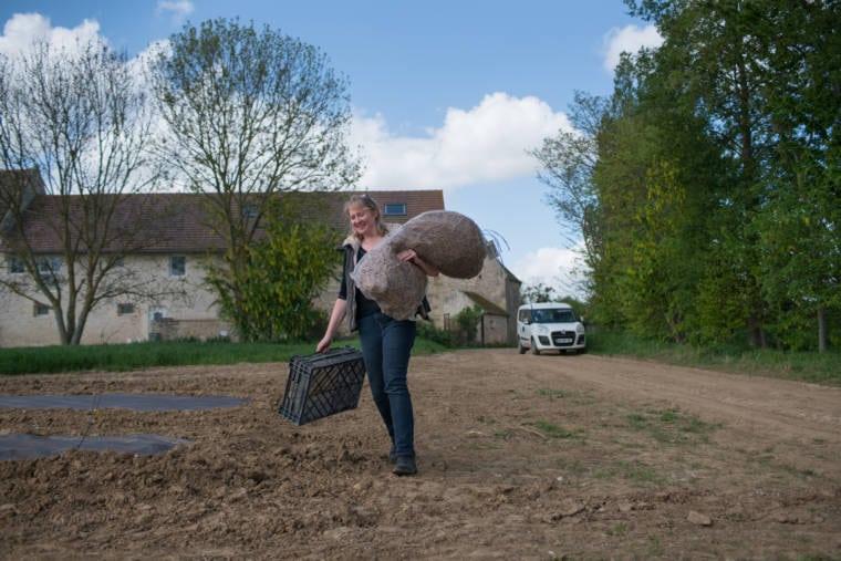 Sophie d'Hoisne marche dans un champ. Souriante, elle porte une cagette vide et un imposant sac.