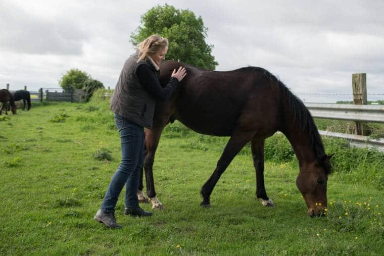 Sophie caressant un cheval au pré.