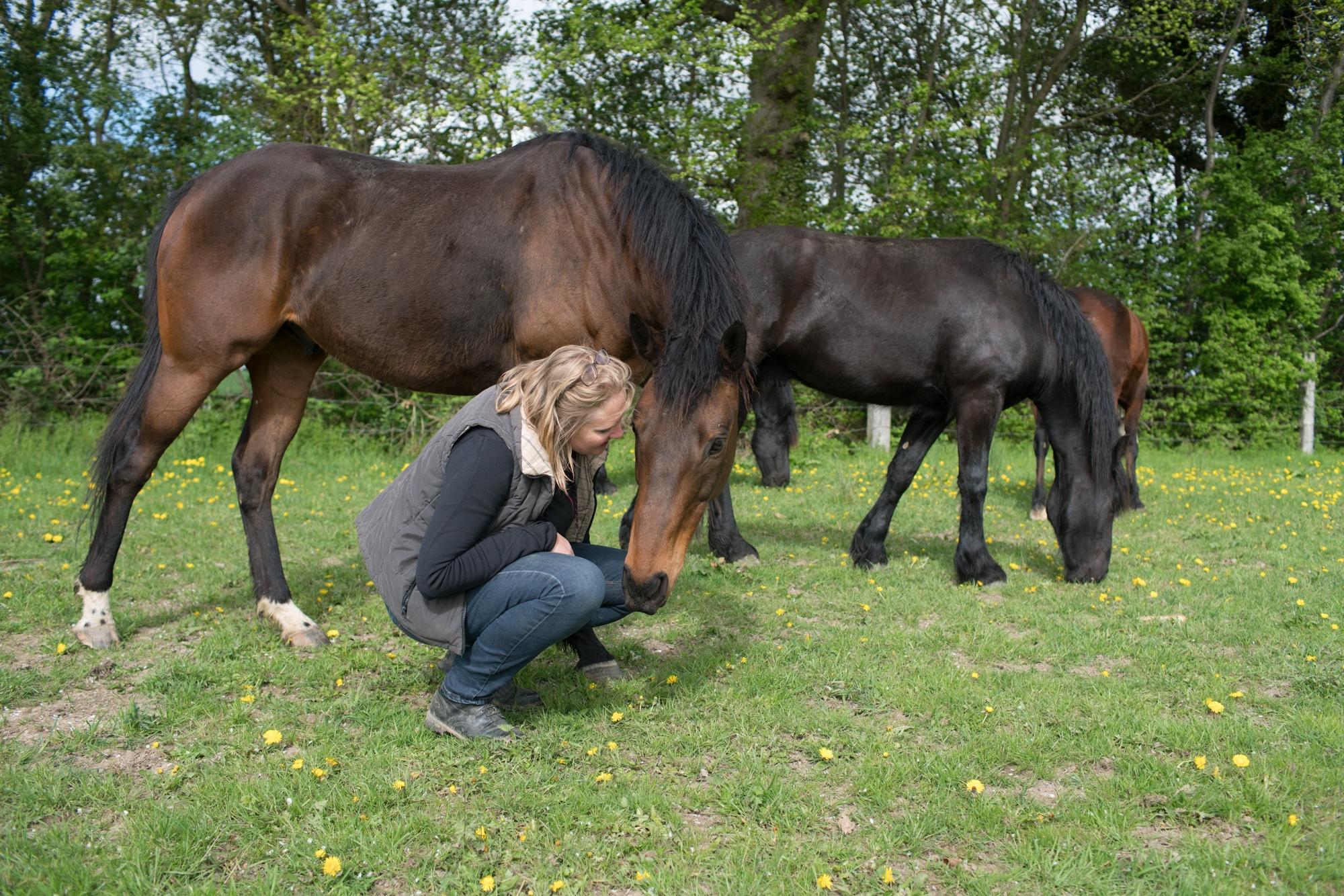 Sophie est accroupie près d'un cheval.